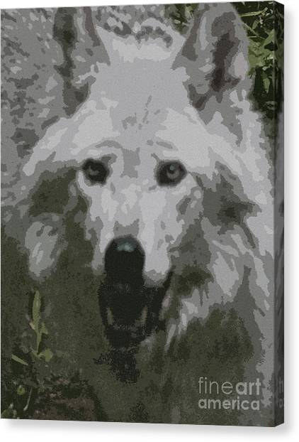 Wide Eyes Vision Canvas Print