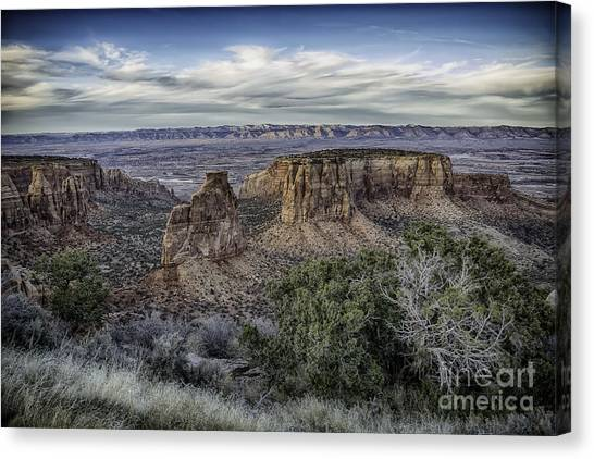 Wide Open  Canvas Print