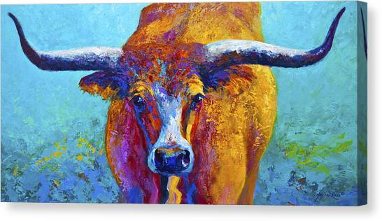 Longhorn Canvas Print - Widespread - Texas Longhorn by Marion Rose
