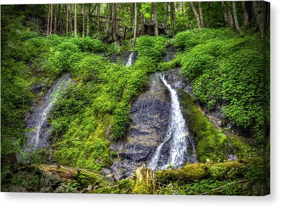 Wigwam Falls Canvas Print