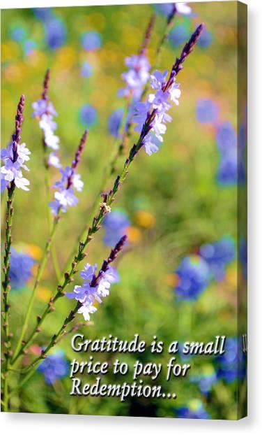 Wild About Gratitude 1 Canvas Print