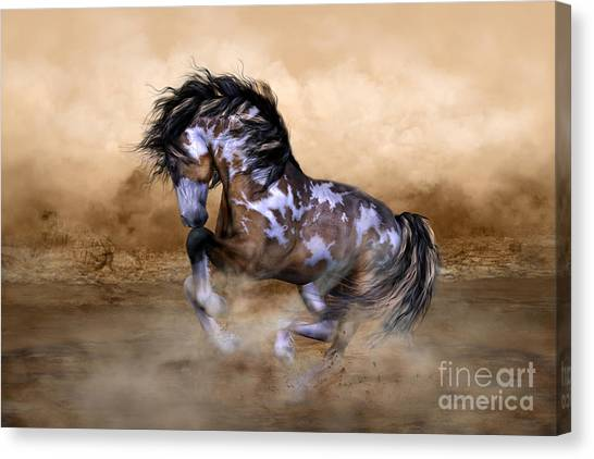Southwest Canvas Print - Wild And Free Horse Art by Shanina Conway