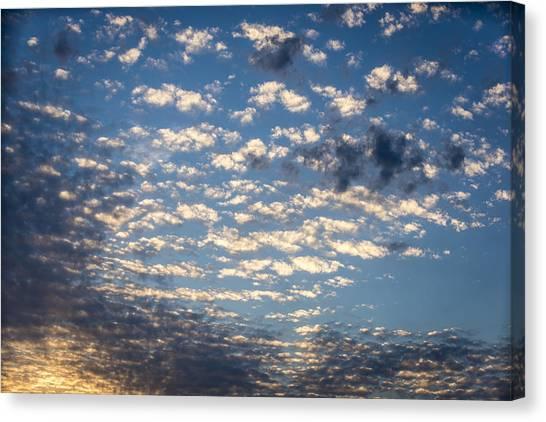 Wild Blue Sunset Canvas Print