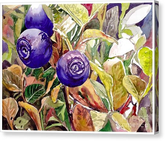 Quebec Canvas Print - Wild Blueberries by Suzann's Art