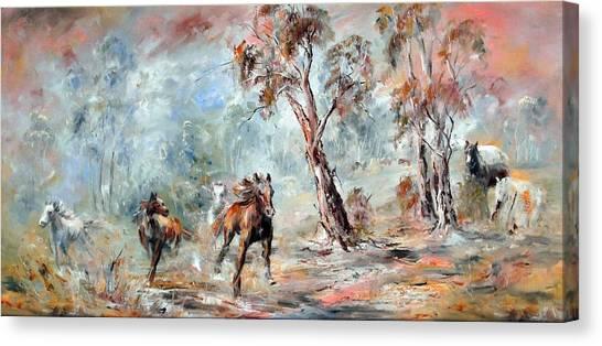 Wild Brumbies Canvas Print