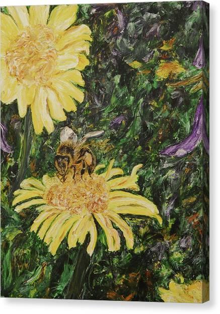 Wild Daisy Canvas Print by Bonnie Peacher