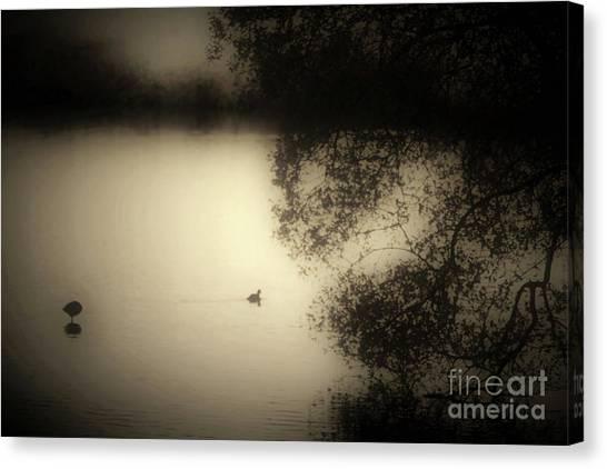 Wild Duckpond Canvas Print by Ron Evans