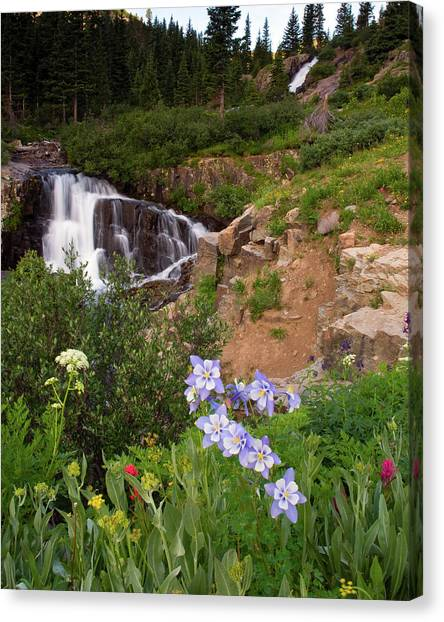 Wild Flowers And Waterfalls Canvas Print