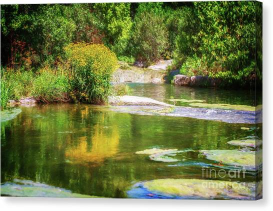 Wild Flowers On Blue River Canvas Print