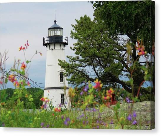 Wild Flowers On Rock Island Canvas Print