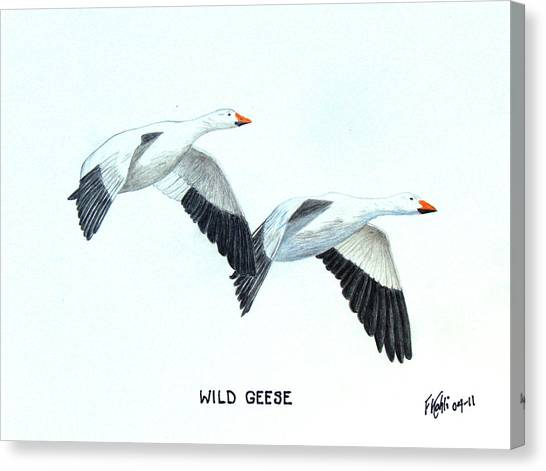 Wild Geese Canvas Print by Frederic Kohli