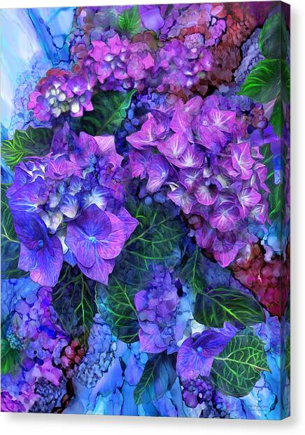 Wild Hydrangeas Canvas Print