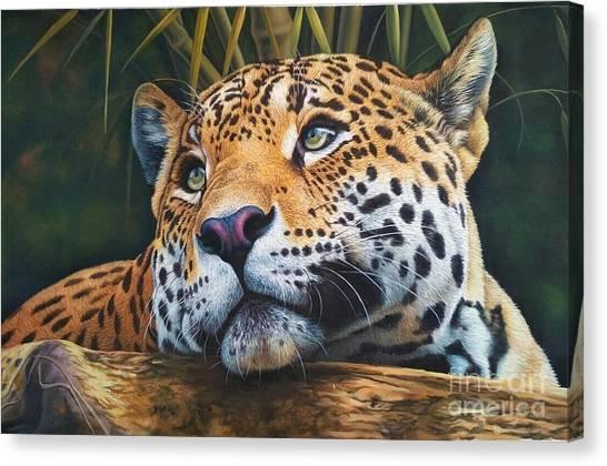 Leapords Canvas Print - Wild Life by Yogesh Iklodiya