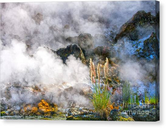 Rotorua Canvas Print - Wild Living Earth In New Zealand by Patricia Hofmeester
