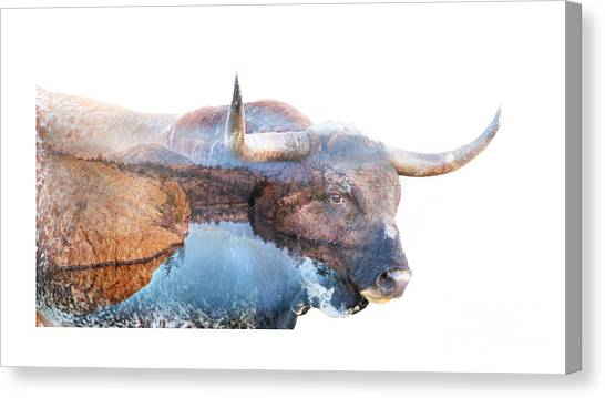 Wild Longhorn Bull And Lake Double Exposure Canvas Print