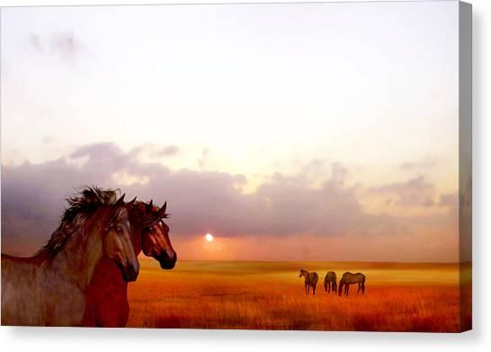 Wild Moorland Ponies Canvas Print
