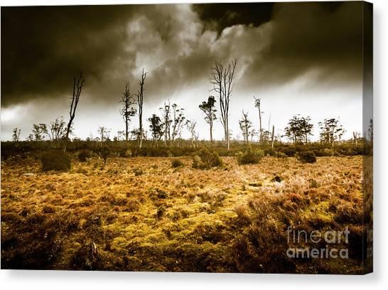 Arid Canvas Print - Wild Moors  by Jorgo Photography - Wall Art Gallery