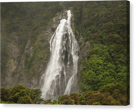 Wild New Zealand Canvas Print