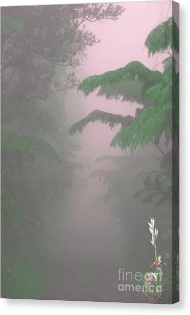 Wild Orchid In Volcano Mist Canvas Print by Uldra Patty Johnson