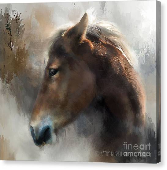 Wild Pony Canvas Print