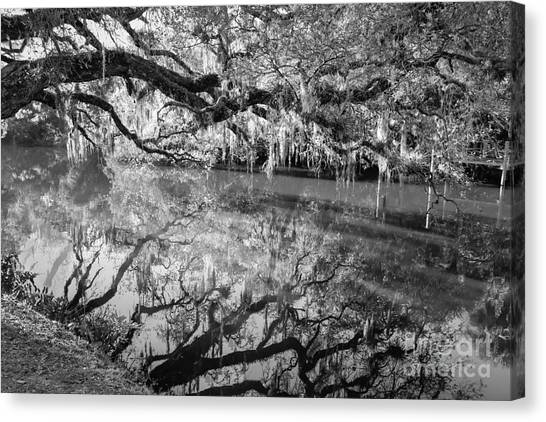 St. Lucie County Canvas Print - Wild Reflection by Liesl Walsh