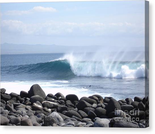 Wild Wave Canvas Print by Chad Natti