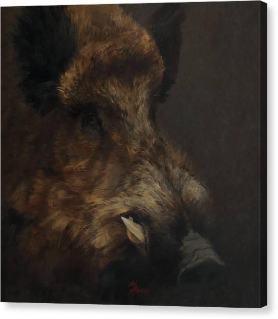 Wildboar Portrait Canvas Print