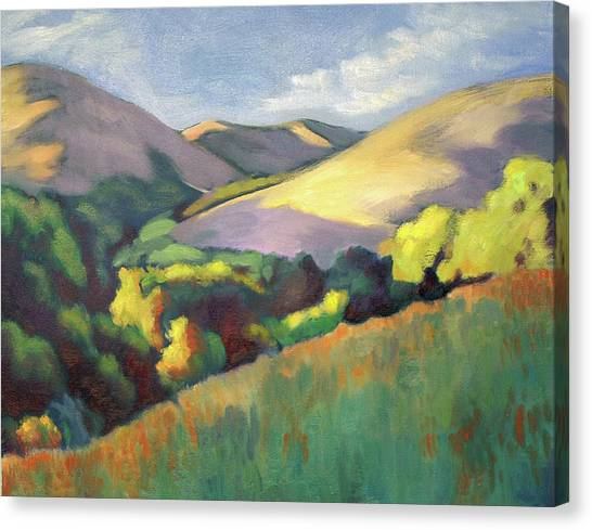 Wildcat Hillside Late Afternoon Canvas Print