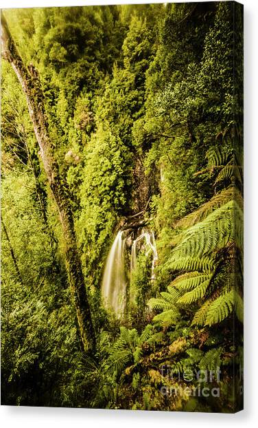 Philosopher Canvas Print - Wilderness Falls by Jorgo Photography - Wall Art Gallery