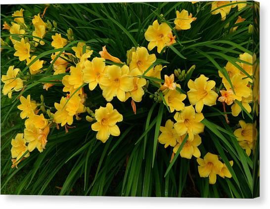 Wildflower Bouquet Canvas Print