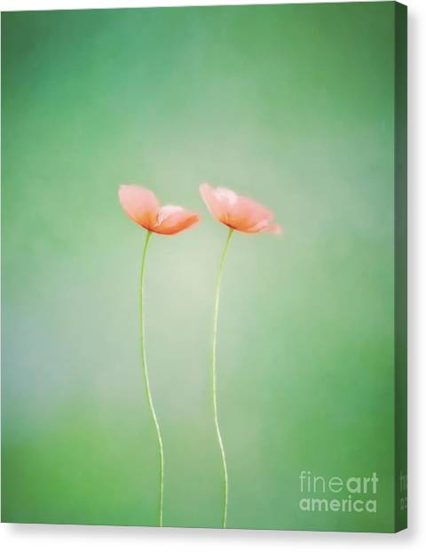 Wildflower Duet Canvas Print