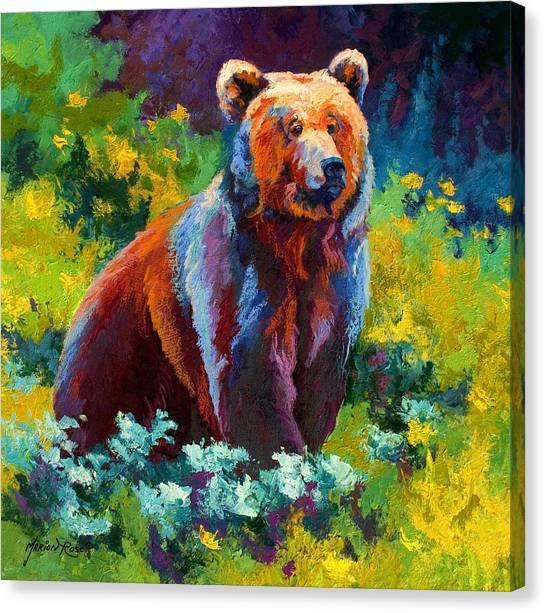 Alaska Canvas Print - Wildflower Grizz by Marion Rose
