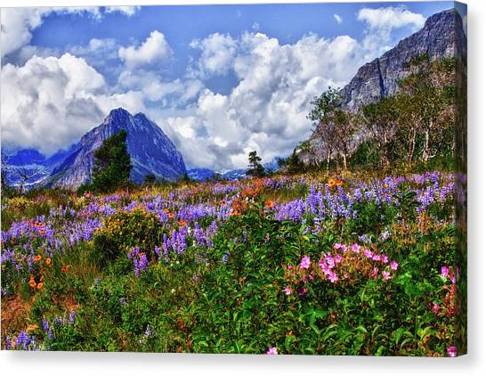Wildflower Profusion Canvas Print