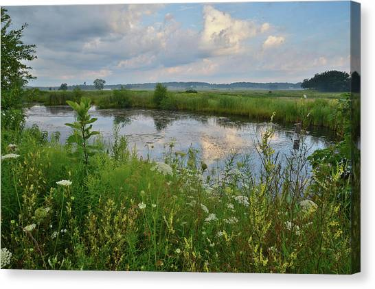 Prairie Sunrises Canvas Print - Wildflowers Adorn Pond In Glacial Park by Ray Mathis