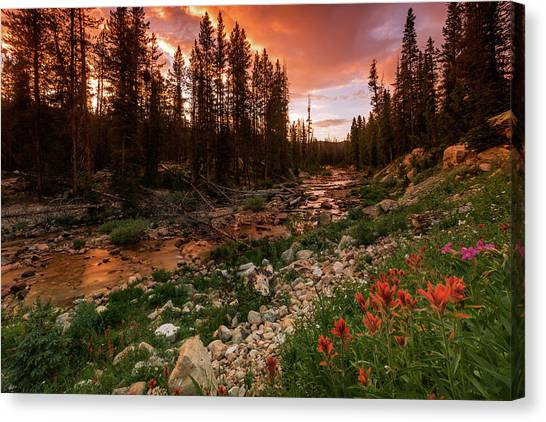 Uinta Canvas Print - Wildflowers Along The Provo River. by Johnny Adolphson