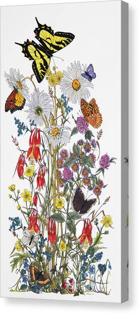 Wildflowers And Butterflies Of The Valley Canvas Print