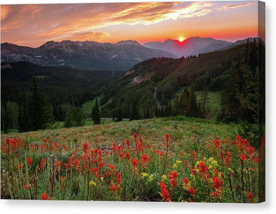 Wildflowers At Gaurdsmans Pass Canvas Print