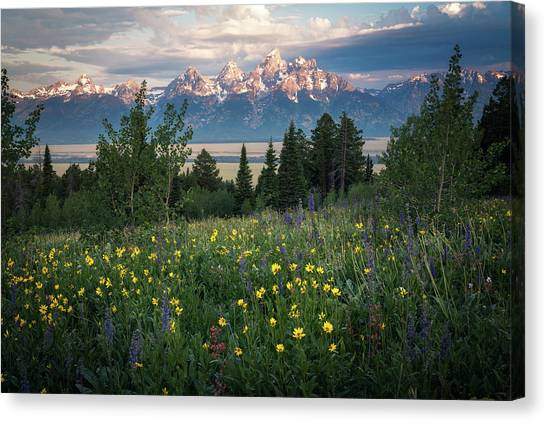 Teton Canvas Print - Wildflowers At Grand Teton National Park by James Udall