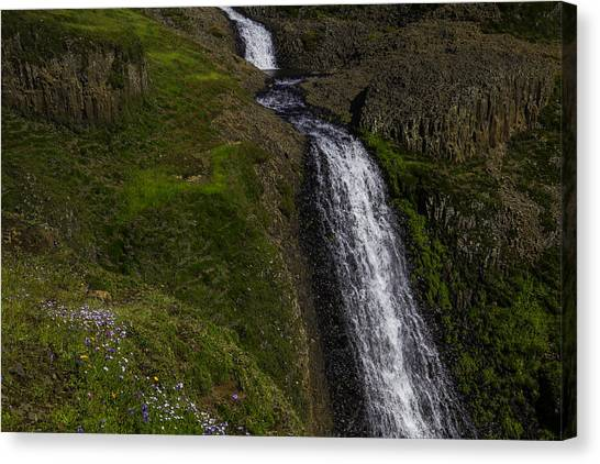 Table Mountain Canvas Print - Wildflowers By Falls by Garry Gay