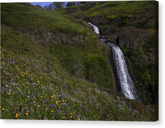 Table Mountain Canvas Print - Wildflowers By Waterfall by Garry Gay