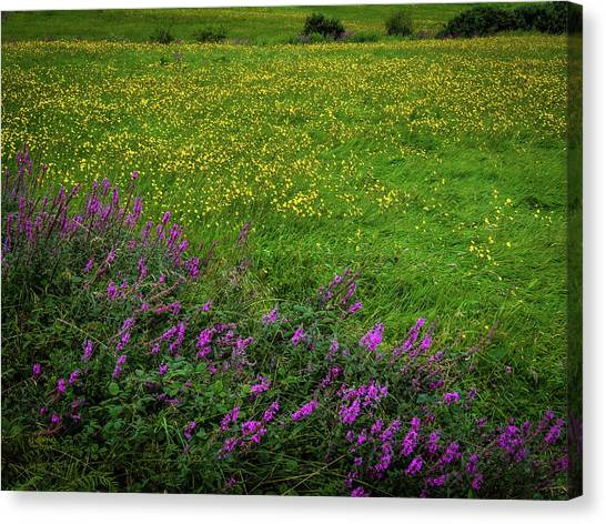 Canvas Print featuring the photograph Wildflowers In An Irish Field by James Truett