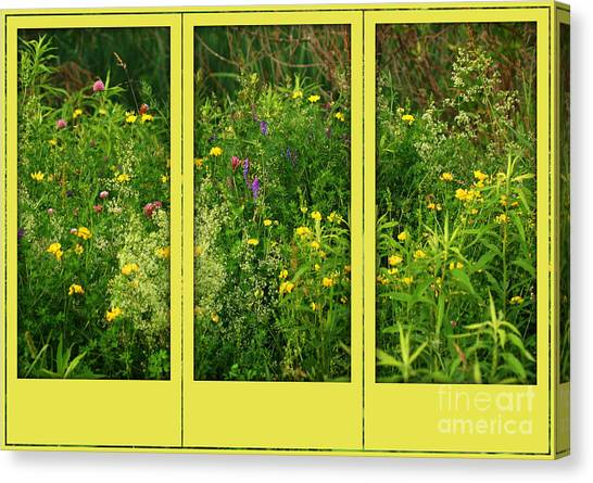 Wildflowers Through A Window Canvas Print