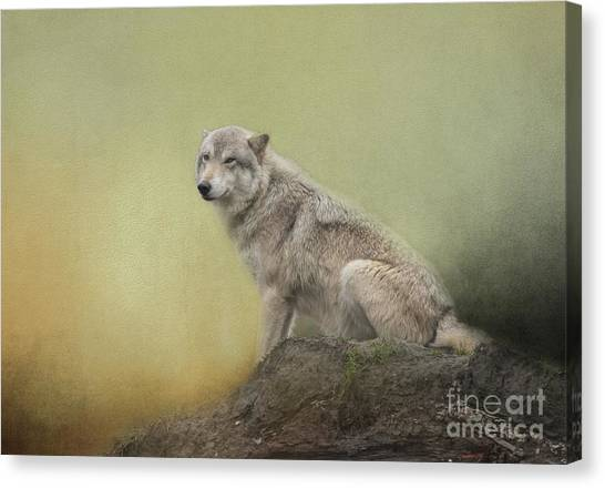 Wildlife Alaska Canvas Print