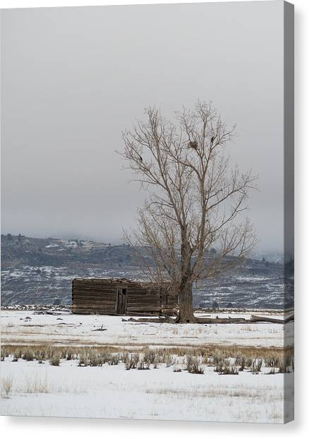Willow Creek Cabin Canvas Print by The Couso Collection