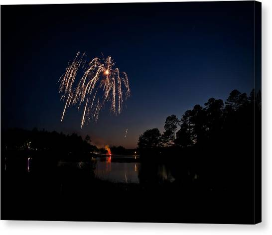 Willow Firework Canvas Print