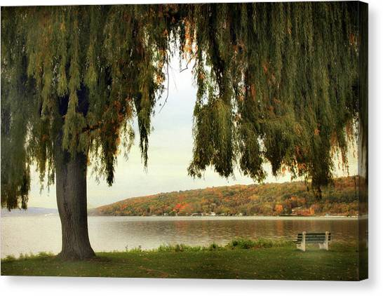 Weeping Willows Canvas Print - Willows Of Stewart Park by Jessica Jenney