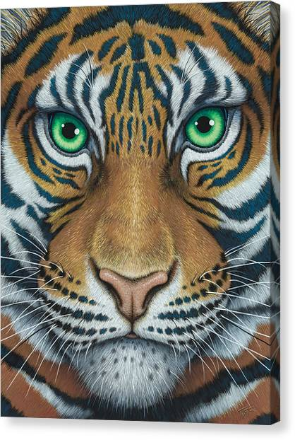 Wils Eyes Tiger Face Canvas Print