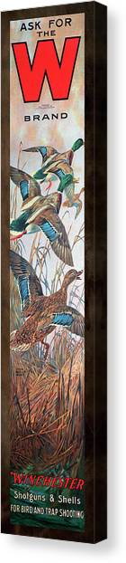 Winchester Bird And Trap Ammo Display Canvas Print