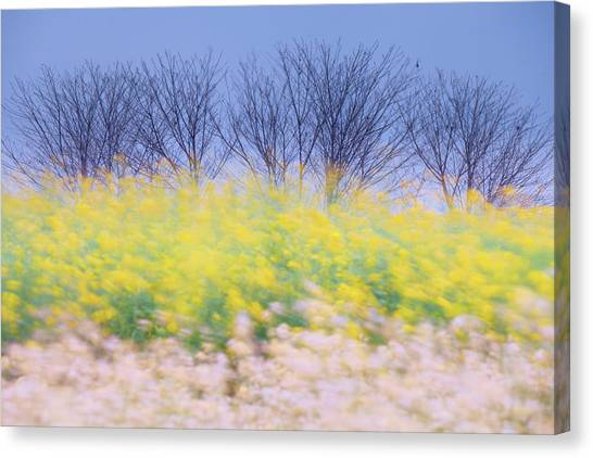 Wind Strokes Canvas Print