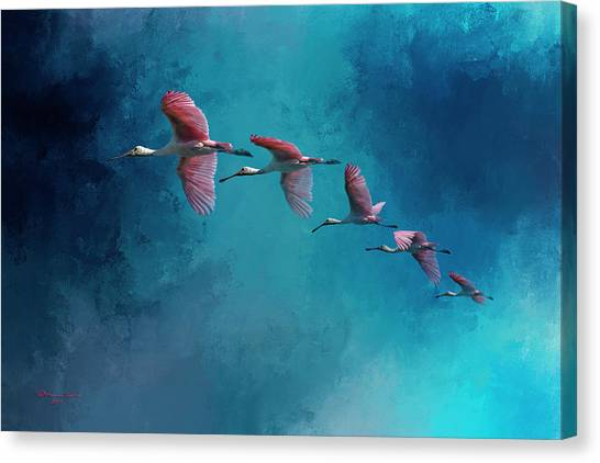 Florida Wildlife Canvas Print - Wind Surfing by Marvin Spates
